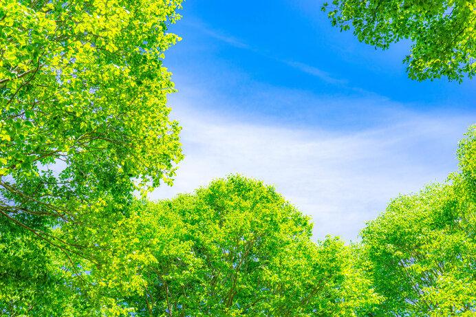 もうすぐ立夏。あなたの季節の楽しみは何ですか?