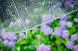 「晴雨兼用」と「雨晴兼用」は同じ?夏日や梅雨にはどちらを使う?