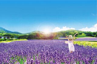 癒しを求めて高原のお花畑へ!フラワーパーク3選【夏のスキー場はいま】