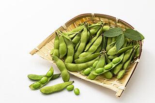 夏のお供と言っても過言じゃない!?枝豆を美味しく食べる方法とは?