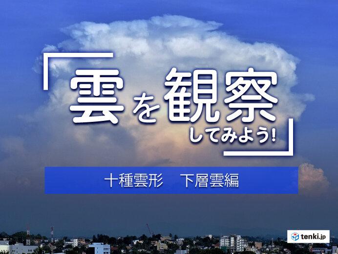 【十種雲形】雲は全部で10種類 見分け方を形や高さから解説!~下層雲編~