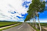 8月10日は「道の日」 果てしなくどこまでも続く道 あなたの行く道は?