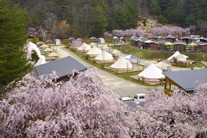 花見をしながらのキャンプは春だけの楽しみ方