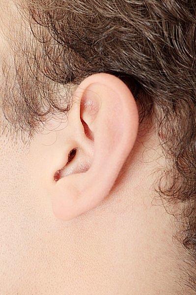 入浴時に忘れがちな耳&耳裏の皮脂汚れ落とし。しっかり耳まわりを洗いましょう!