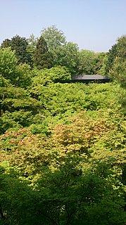 絶景かな~絶景かな! 青もみじの京都へ≪美を求める旅≫、薫風に誘われていざ!