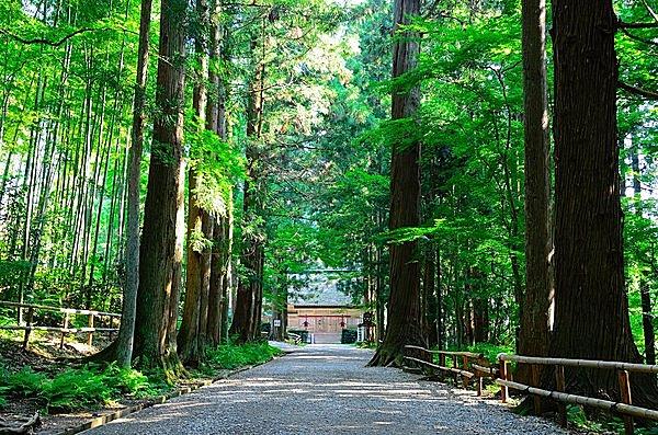 中尊寺・白山神社への参道。若葉が茂る道の奥には能楽殿。