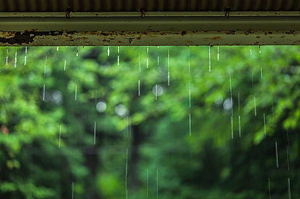 四季と雨は仲良し? 梅雨はグローバル?
