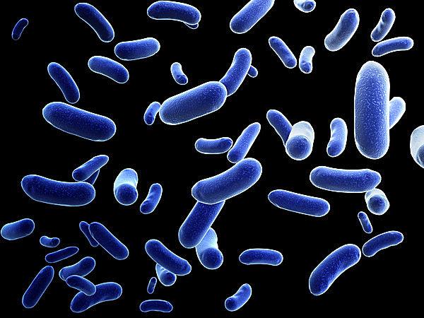 人食いバクテリアの恐ろしさを知っていますか? 手足の痛みや腫れの異常を感じたら、すぐに医療機関へ!
