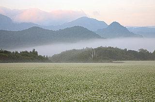 季節は晩秋の気配…二十四節気「寒露」。野山は色づき、渡り鳥がやってくる時節です
