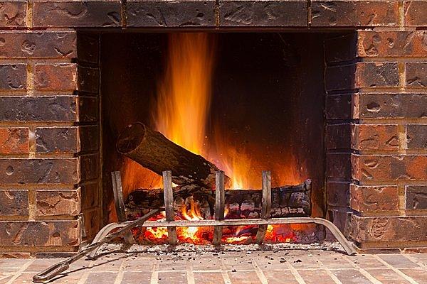 なんと人間も家族で冬眠していました! 七十二候「霜始降(しもはじめてふる)」