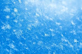 二十四節気「小雪(しょうせつ)」~冬めくころになりました