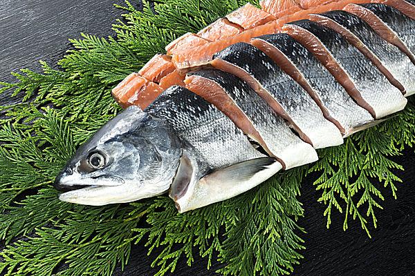 鮭を読む時、「サケ」「シャケ」どちらで読んでいますか? 単なる方言ではない、意外な違いとは?