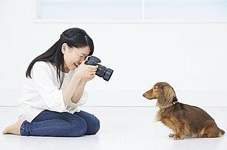 ペットから動物園まで……! 上手に可愛く、動物を撮影するためのテクニックとは?