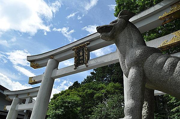日本人の信仰の対象であったオオカミ(大神)