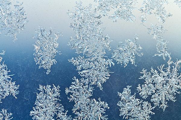 霜は大気中の水蒸気が凍って降ったもの